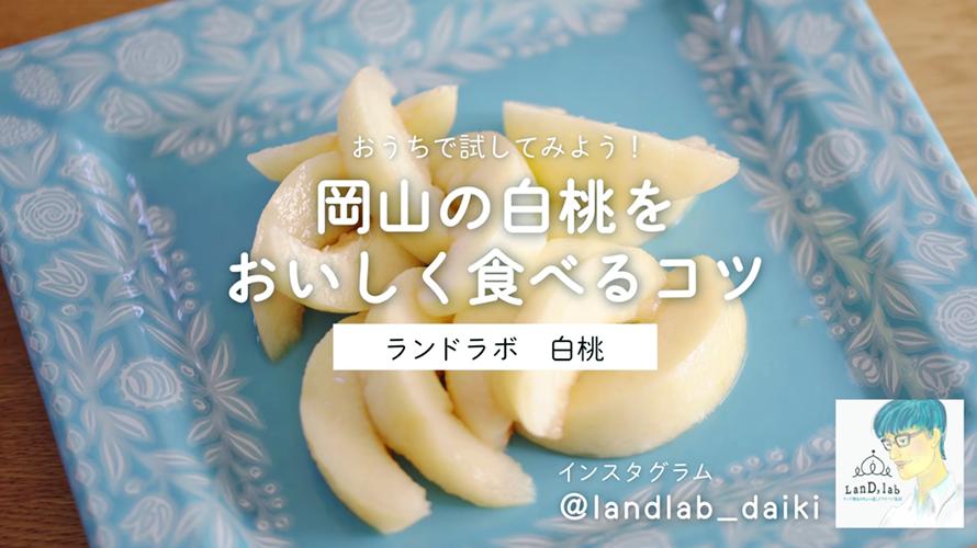 レシピ動画_白桃